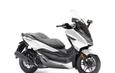 Honda NSS 125 AD Forza ABS WINTER-AKTION