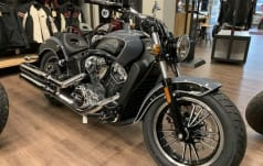 Indian Scout Icon Limited