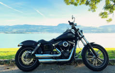 Harley-Davidson FXDBC  Street Special ABS